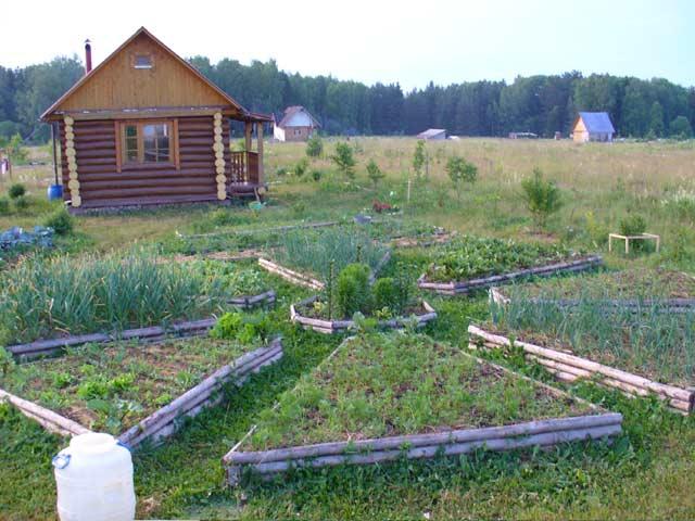 как получить участок под огород и строительство дома
